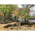 聖宝寺 #202011 #s三重