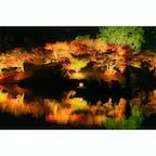 香川県 〜栗林公園〜 今年の秋のライトアップは 11/20〜11/29までですので 約1週間のレア景観ですね〜。 平日行ったけど通路は人だらけで 土日はもっと混むだろうと思われます笑笑