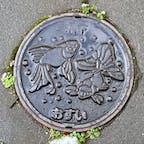 札幌金魚🐟魚シリーズだ