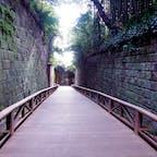 #猿島 #無人島 #神奈川