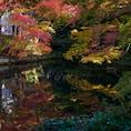 水面に映る紅葉もまた綺麗。 3年ほど前の写真なので京都のどこで撮ったかは忘れたけど…  #京都府 #紅葉