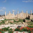 キプロス パフォス 古代のモザイクが多数ある遺跡