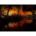 広島 縮景園  早くたくさん旅行したい〜✈︎
