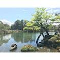 石川県 兼六園 冬にまた見に行きたい。