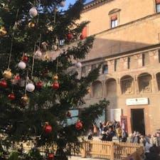 ボローニャ、ネプチューン広場のクリスマスツリー 19年末撮影