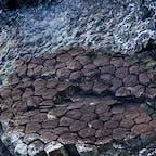 柱状節理と呼ばれる六角形の柱の組合せの地層。不思議な自然の力です。