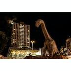 福井県 〜福井駅前〜 恐竜県と呼ばれる福井県の 駅前には恐竜のオブジェが ドーンと設置されてます🦕