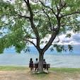 あのベンチ  彦根の琵琶湖湖畔にある「あのベンチ」は癒されます。  行ってみたいと、思う方は、此の住所をナビに、滋賀県彦根市石寺町1331  #あのベンチ #サント芹沢鴨の写真