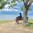 あのベンチ  TV情報番組で話題になった、彦根の琵琶湖湖畔のあのベンチです。 行かれる方は、此の住所をナビに、滋賀県彦根市石寺町1331  #あのベンチ #サント芹沢鴨の写真
