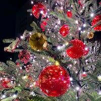 毎年クリスマスから成人の日までは一瞬で過ぎていく🏃♂️ どうか健康で、温かい笑顔が溢れる一年になりますように。そうしましょう!  ミッドタウン日比谷の前のツリーです✨
