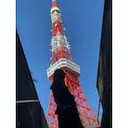 東京タワー🗼  近くで見るとやっぱり高い!😳✨
