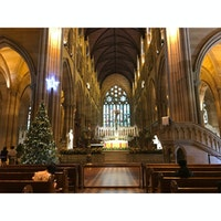 St Mary's Cathedral (🇦🇺)  クリスマス×大聖堂 って神秘さが増す増す🔔^^