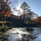 六甲高山植物園 自然が楽しめる穴場スポット #六甲#植物園#神戸