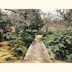 #伊豆長岡 #三養荘 #日本庭園