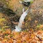 #宮城 #仙台 滝見台から見下ろす秋越しの #鳳鳴四十八滝