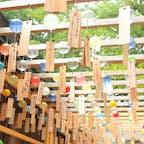 #埼玉 #氷川神社 #2019smr