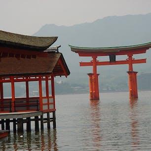 嚴島神社の大鳥居  現在の大鳥居は、平安時代から8代目にあたり、明治8年(1875)に再建されました。笠木と島木は箱になっており、石や砂が約5t詰められています。根元は海中に置かれているだけで、自重で立っています。主柱の基礎は、千本杭[せんぼんくい]が用いられ、45cmから60cmの松杭がそれぞれの柱に約30本から100本打ち込まれています。楠は、比重が重いことと、腐りにくく、虫に強いからです。 棟の西側には三日月が、東側には太陽の印があり、陰陽道の影響がみられます。  #サント船長の写真 #鳥居 #神社仏閣
