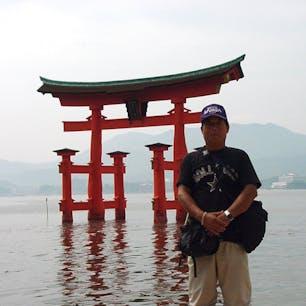 嚴島神社の大鳥居  嚴島神社の大鳥居は、木造で両部鳥居(四脚鳥居)です。高さ約16.6m、棟の長さ24.2m、主柱周り9.9m、総重量は約60t、木部は丹塗り(光明丹[こうみょうたん])、主柱は楠の自然木を、袖柱[そでばしら]は杉の自然木を使っています。  #サント船長の写真 #鳥居 #神社仏閣