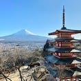 2020年春 快晴 新倉山浅間公園から見た富士山