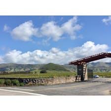 サンルイス・オビスポ(カリフォルニア)  ピノ・ノワールとシャルドネで知られている、火山丘陵の麓に広がるトロサ・ワイナリー(Tolosa Winery)。  州内で最も涼しいエドナ渓谷に位置し、寒暖の変動具合や、このエリア特有の気流が夜霧を飛ばすことなどが、ワイン葡萄作りに適しているそう。  お陽さまと風と大地の恵みが、ぎゅっと凝縮されたカリフォルニアのワインを、産地でゆっくりテイスティング。お気に入りの一本を見つけたい。  #sanluisobispo #california #tolosawinery