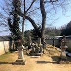 竹中半兵衛の終焉地 半兵衛は美濃(岐阜県)出身の兵法家で、秀吉の片腕として活躍しました。三木城攻防戦の最中、平井山の陣中で病死しました。 本営のあった山に続いたぶどう畑のまん中の、白い練りべいに囲まれて墓があります。  #サント船長の写真 #歴史的人物の終焉地