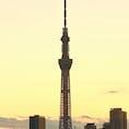夕日に映える東京スカイツリー