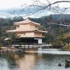 京都府  金だった金閣寺