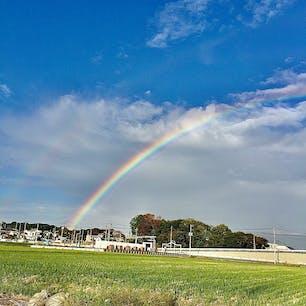 雨が止んだあと、撮りました  埼玉県桶川市です