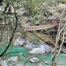 祖谷かずら橋🍂 2021.03.06