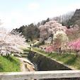 後藤又兵衛とは 大阪の陣が起こると、秀頼の招きに応じ入城、夏の陣では大和方面に出馬して戦功がありましたが、道明寺河原で討ち死にしたと伝えられています。  #サント船長の写真 #サントの桜巡り