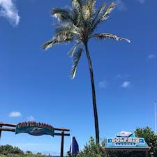 . ハワイに到着早々 時差ボケで眠い中バスツアーで連れて行かれた Sealife Park🐟 記憶があまりない😇
