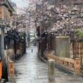 祇園白川巽橋 2021年3月21日雨の祇園白川の桜咲く頃ですが、今はコロナ禍で見て下さい、猫の子一匹居ないとは此の事ですね、突き当たりは京都のメイン通りの四条です、此の道は「切りどうし」ですね♪ 祇園でも屈指の観光地です。 それがこんな光景です。  #サント船長の写真 #サントの桜巡り #京都 #巽橋