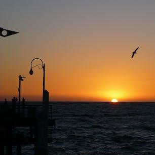 サンタモニカ(カリフォルニア)  桟橋から、沈みゆく太陽を惜しむひととき。サンタモニカ・ピア(Santa Monica Pier)にて。  多くの人に親しまれているこの桟橋。元々は、処理された下水を海へ放出するため、橋の下にパイプを通す形で、1909年に市が必要に迫られて作った街のインフラの一つ(幸い、1920年代には取りやめに)。  この地特有の気象条件に耐えられるよう、木造ではなく、新たなテクノロジーを導入した西海岸初のコンクリート製の橋だったため、オープニング・セレモニーは多くの人で沸いたそう。  地元コミュニティにとって桟橋は一躍話題のスポットになり、老若男女問わず、こぞって釣り糸を垂らす風景が日常に。伝説の巨大なブラック・シーバスが釣れると人気だった。  やがて時は大恐慌時代。1925年、元・水夫のオラフ・オルセンは、桟橋に降り立つやいなや引退を撤回し、レクリエーション用のフィッシング・ボートで漁船団を組んだ。  真のヒーローであるオラフは、商業用の大きな魚網も難なく操り、釣果の一部を食料を必要としている家庭に無償で提供。  このオラフがどうなったかと言うと。桟橋の常連で、執筆中の連載作品シンブル・シアター(Thimble Theater)に必要なヒーローを探していた漫画家、エルジー・クリスラー・シーガーの目に留まり、彼なりの解釈で描いた「水夫のポパイ(Popeye the Sailor Man)」として1929年から世に登場。  後はポップ・カルチャーの歴史でも知られている通りで、そんな人気キャラクター発祥の地でもあるよう。  #santamonicapier #california #popeye #sunset