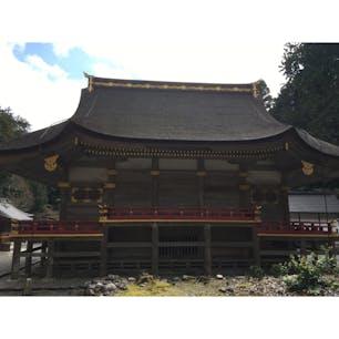 日吉大社 屋根の形が独特です。