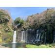 白糸の滝 #202103 #s静岡