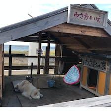 青森 わさおの家 今は亡きわさお 海一望の素敵な場所でわさおも幸せだったと思います わさおの家で売っていたイカ焼きがめっちゃ美味しかった!