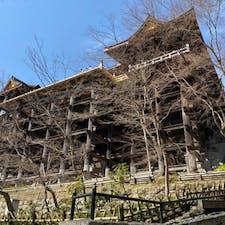 清水寺の舞台 (京都)  現在の建物は、徳川家光の寄進により1633年(寛永10年)に再建されたもので国宝。  正面36メートル強、側面約30メートル、棟高28メートルの大堂です。  その堂内前に舞台が有りますが、創建当時は舞台は無く、本堂だけでした。 清水寺は参拝者が多くて手狭になり広げてました、その部分が舞台です。  「清水の舞台から飛び降りる」は江戸時代ごろから言われた様で、飛び降りて命が有れば、願いは成就されると言われた様です。 今は、何か高価な物を買う時、何かを思い切る時に 使われて居ますね、  しかし実際に飛び降りる方はいたのか? 記録では234人の方が飛び降りました、そして34人の方が帰らぬ人に、何と生存率80%以上ですね、但し今より樹木が多く木に引っ掛かり助かる人も多いようです。 しかし60才以上の方は全員死亡されて居ます。  #サント船長の写真 #京都
