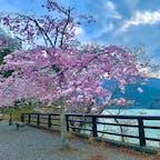 奥多摩  #奥多摩 #奥多摩湖 #東京都