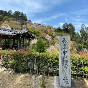 善峯寺 善峯寺は西国三十三ヶ所巡礼の二十番の霊場です。  #サント船長の写真 #京都