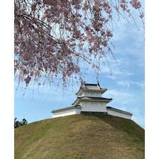 宇都宮城址公園。 少し桜が残ってました🌸