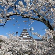 福島県鶴ヶ城。 別のアングルからも良いのが撮れたので載せます。
