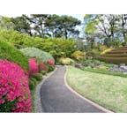 駿府城公園。