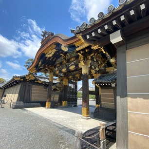 二条城の唐門  二条城にある重要文化財建造物。二の丸御殿の正門。四脚門でその屋根の前後に唐破風を備え、門として最も格式が高い。 冠木(かぶき)の上はすべて彫刻で埋め尽くされ、龍や虎といった霊獣に加え、鶴・亀・松竹梅といった長寿や吉祥を象徴するモチーフが刻まれている。  #サント船長の写真 #京都 #唐門