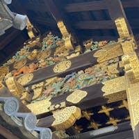 二条城の唐門 しかし、唐門とは豪華ですね、二条城の唐門は重用文化財ですが、西本願寺の唐門(現在は修復中)は国宝です。二条城も西本願寺も共に世界遺産ですね。  #サント船長の写真 #京都 #唐門