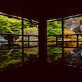 滋賀 旧竹林院 テーブルに反射した庭園で有名。