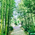 #ガーデンパーク  #静岡 #浜松