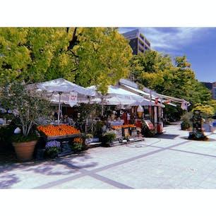 平和記念公園すぐそばのカフェ!雰囲気がすてき オレンジジューステイクアウトしようと思ったけど現金なくて買えなかった!
