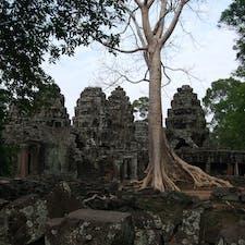 アンコール遺跡 タ・プロム 木の生命力がすごい