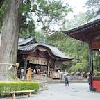すごいパワーを感じた気がする!杉が立派でした!  #北口本宮冨士浅間神社 #千年杉
