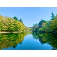 Kumoba Pond 〜Swan Lake〜    #kumobaike #kumobapond #swanlake #shinsyu #japan #karuizawa #kitasakugun #nagano #軽井沢 #北佐久郡 #長野 #日本 #雲場池 #素敵な景色 #日本の風景 #風景写真 #旅したくなるフォト #旅行好き #散歩 #旅スタグラム #誰かに見せたい景色 #写真撮るのが好きな人と繋がりたい #写真好きな人と繋がりたい #カメラ好きな人と繋がりたい #旅行好きな人と繋がりたい #旅好きな人と繋がりたい #旅に出よう日本を楽しもう #相互フォロー #カメラ初心者 #インスタ初心者